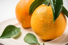 Fruta deliciosa de la naranja navel dos Foto de archivo libre de regalías