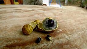 Fruta Diamond River Varieti del Longan fotografía de archivo libre de regalías