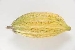 Fruta do cacau Imagens de Stock