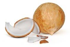 Fruta do coco isolada no branco imagens de stock royalty free