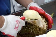 Fruta do Durian Imagens de Stock