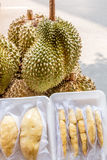 Fruta do Durian Fotografia de Stock Royalty Free