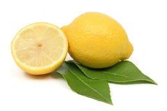 Fruta do limão Fotografia de Stock Royalty Free