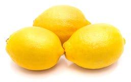 Fruta do limão isolada no branco imagem de stock royalty free
