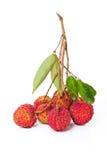 Fruta do Litchi Imagem de Stock