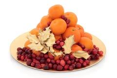 Fruta do Natal Fotos de Stock Royalty Free