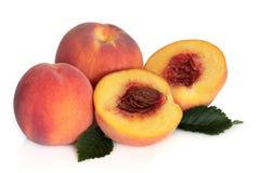 Fruta do pêssego Imagem de Stock