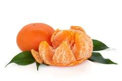 Fruta do Tangerine Imagens de Stock Royalty Free