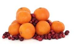 Fruta do Tangerine e da airela Imagens de Stock