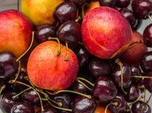 Fruta e baga Fotos de Stock