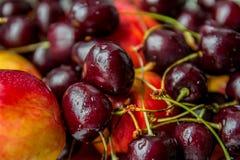 Fruta e baga Imagens de Stock Royalty Free