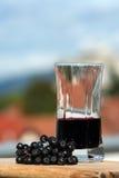 Fruta e suco de Aronia imagem de stock