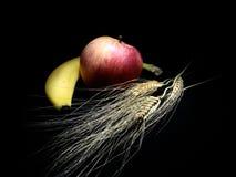 Fruta e trigo Imagem de Stock Royalty Free