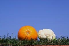 Fruta e verdura fotografia de stock