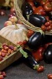 Fruta e verdura fresca Imagens de Stock