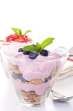 Fruta e Yogurt Fotografia de Stock