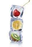Fruta en cubos de hielo imagenes de archivo