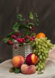 Fruta en un fondo oscuro Imágenes de archivo libres de regalías