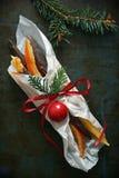 Fruta escarchada foto de archivo libre de regalías