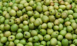 Fruta estacional popular en el nake kul/boroi de Bangladesh imagenes de archivo