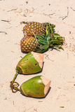 Fruta exótica Fotografia de Stock Royalty Free
