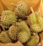 Fruta famosa del durian fresco Foto de archivo