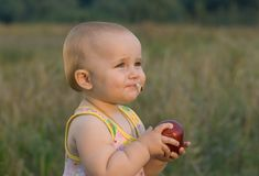 Fruta favorita. Foto de Stock