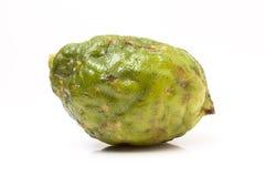 Fruta feia fotografia de stock