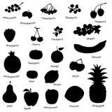 Fruta fijada (vector) Fotografía de archivo libre de regalías