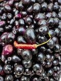 Fruta fría del anuncio imagen de archivo libre de regalías