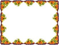 Fruta-frame Fotografia de Stock