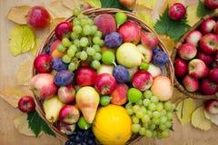 Fruta fresca imagem de stock