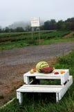 Fruta fresca da exploração agrícola imagem de stock