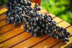 Fruta fresca de la baya o de la uva en huerta, fruta limpia o fondo popular de la fruta, fruta del mercado de la huerta de la agr Imagen de archivo