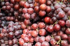 Fruta fresca de la uva Imagen de archivo libre de regalías