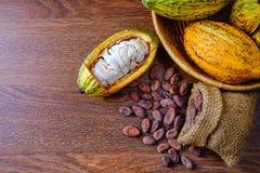 Fruta fresca del cacao con las vainas del cacao con los granos de cacao imagen de archivo libre de regalías