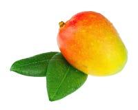Fruta fresca del mango con las hojas del verde aisladas en el fondo blanco Imagenes de archivo