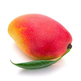 Fruta fresca del mango con las hojas del verde aisladas en el fondo blanco Imagen de archivo libre de regalías