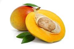 Fruta fresca del mango con las hojas verdes aisladas Foto de archivo