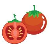 Fruta fresca del tomate Imagen de archivo