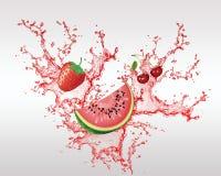 Fruta fresca en el vector del chapoteo Fotografía de archivo libre de regalías
