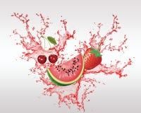 Fruta fresca en el vector del chapoteo Fotos de archivo
