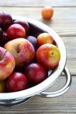 Fruta fresca en un colador del metal Fotos de archivo libres de regalías