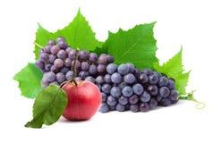 Fruta fresca sana colorida Fotos de archivo libres de regalías