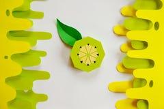 Fruta hecha del papel Fondo blanco tropics Endecha plana Kiwi del papel fotografía de archivo libre de regalías