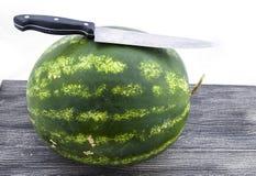 Fruta imprescindible de la sandía de los meses del verano, esperándole que se cortará con un cuchillo Imagenes de archivo