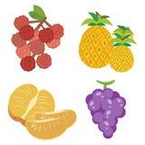 Fruta linda collection09 Imagen de archivo libre de regalías