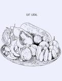 Fruta local en la cesta, línea dibujada mano ejemplo V del bosquejo del arte Fotos de archivo libres de regalías