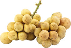 Fruta longa do gongo de Tailândia Imagens de Stock