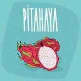 Fruta madura aislada del pitaya o del pitahaya o del dragón stock de ilustración